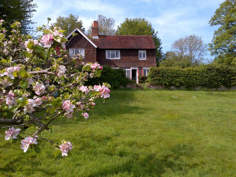 Cottage from lower garden in Spring