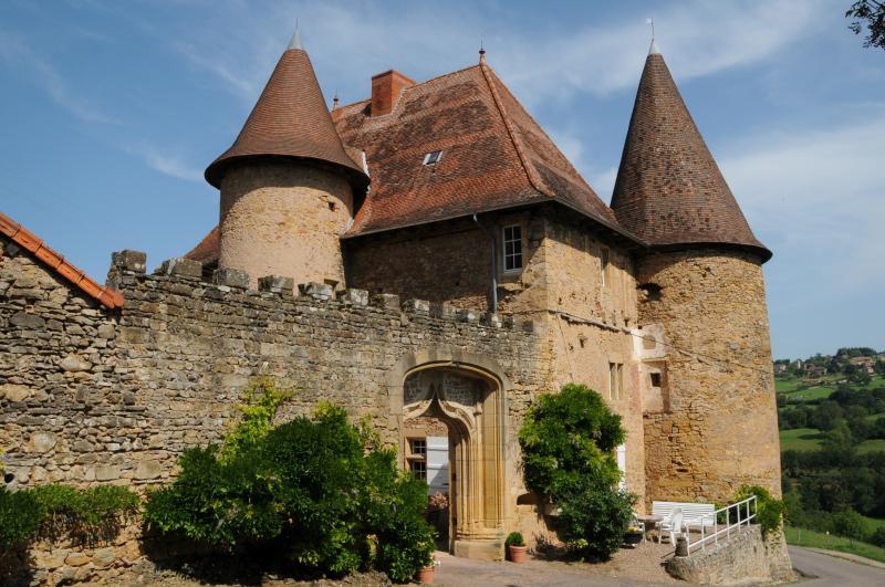 Château de Barnay, holiday rental in Bois-Sainte-Marie