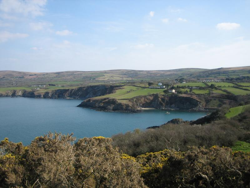 Coast path near Fishguard