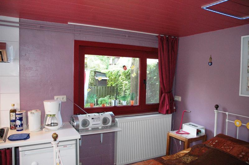 vieuw through the back window - central heating under the window