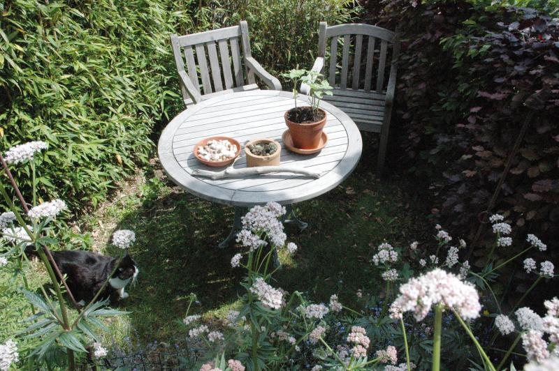 another sitting corner with wooden garden furniture near the pond in company of cat Delphine