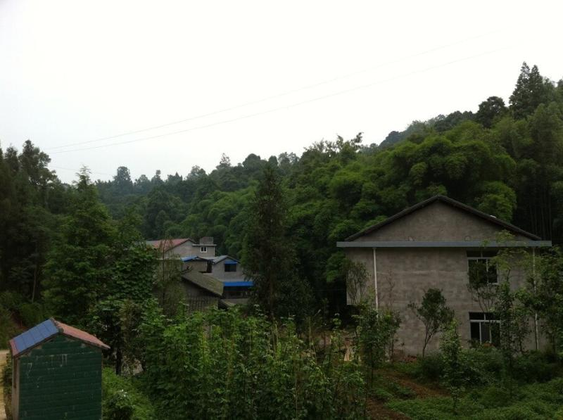 Rural Escape in a Pretty Cozy Village Villa, vacation rental in Emeishan