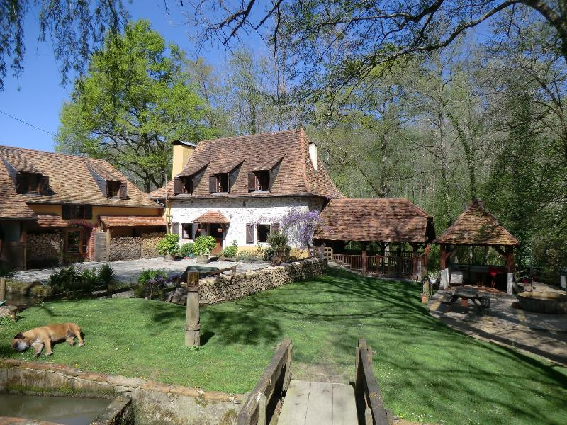 GITE DU MOULIN LERE***, holiday rental in Sauvelade