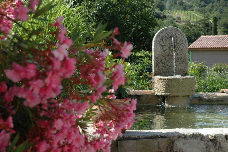 The fountain of the home and the Oleander