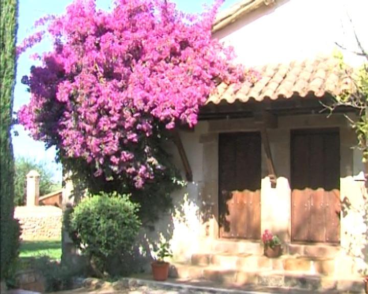 Apartamentos Padruno, para 2/4 personas en Oreña, holiday rental in Treceno