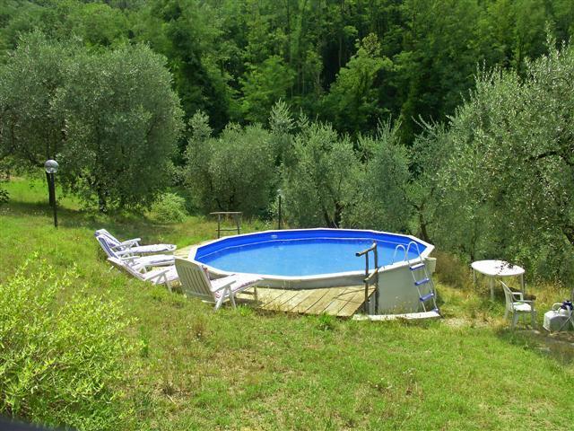 Pool im Olivenhain