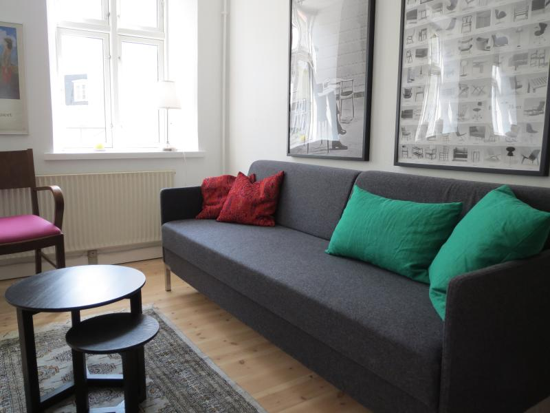 Sitting room with double sleeping couch