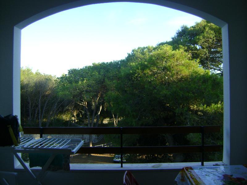 Una casa in mezzo al bosco sul mare, holiday rental in San Cataldo