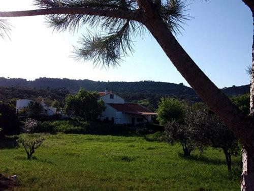 View over the property
