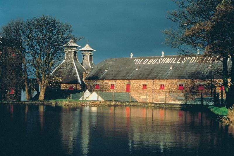 World class salmon fishing on the River Bush, in sight of Ireland's oldest distillery