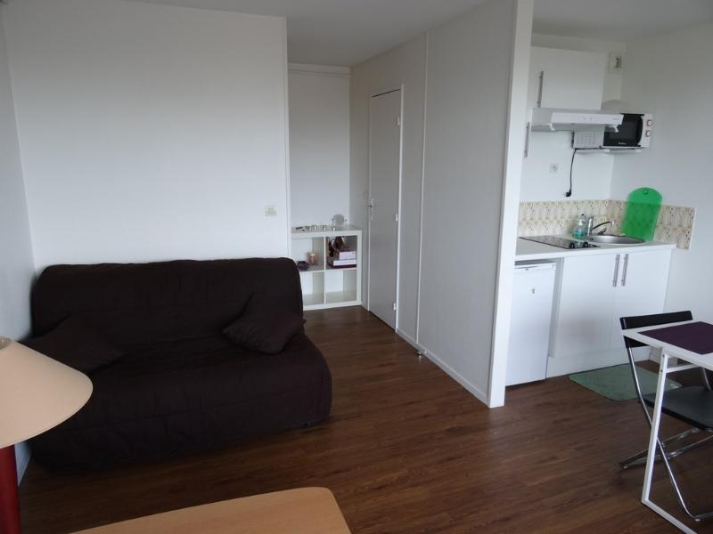 Splendide appartement  avec une vue magnifique, alquiler vacacional en Saint-Martin-de-Boscherville