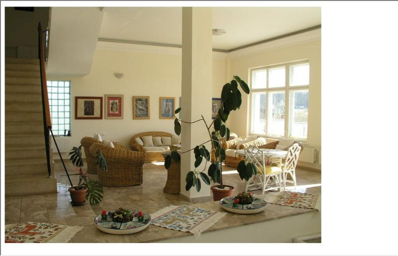 Magestic front lake villa, vacation rental in Fagaras