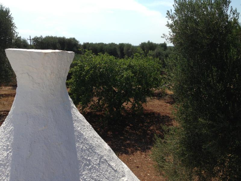 The top of the Trullo