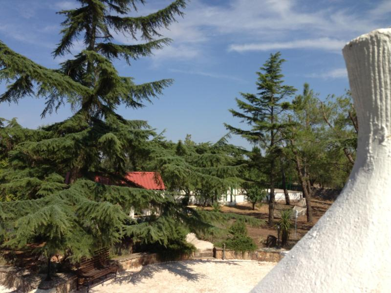 The top of Trullo Primo