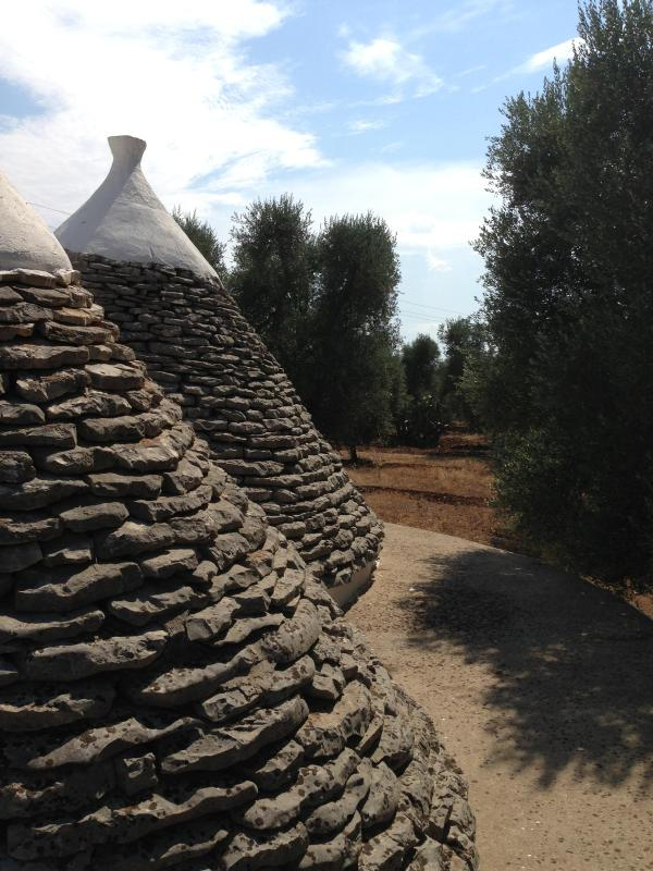 The cones of the Trullo Primo
