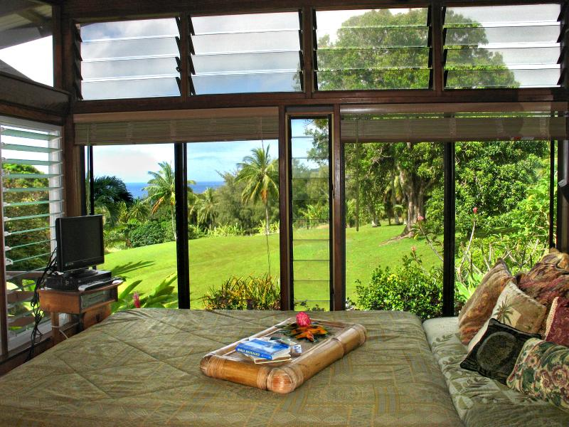 Ala Aina Ocean Vista - Hana Bed and Breakfast, holiday rental in Maui