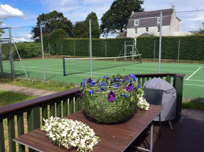 Come and play Tennis!