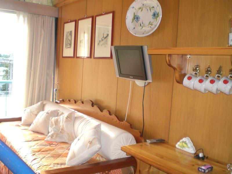 Delizioso Bilocale sulle Dolomiti Marilleva 1400, holiday rental in Comasine