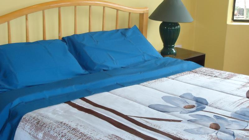 double bed in the master bedroom