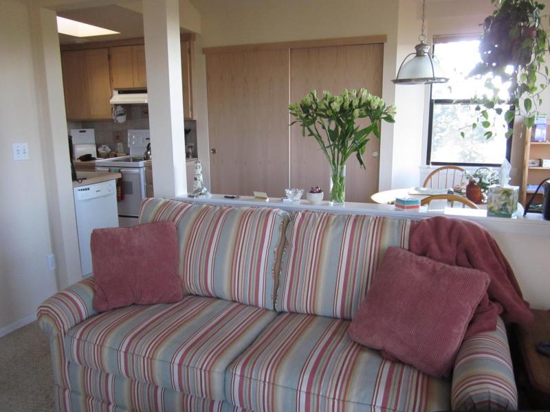 the new sleeper sofa sleeps two additional guests