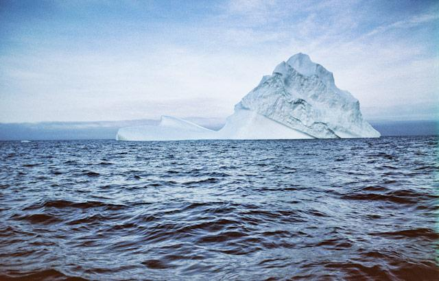 Trinity is located on Iceberg Alley, where 'bergs float from the arctic, down the island's coast.