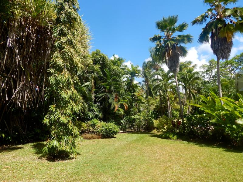 Gibbes Estate Grounds