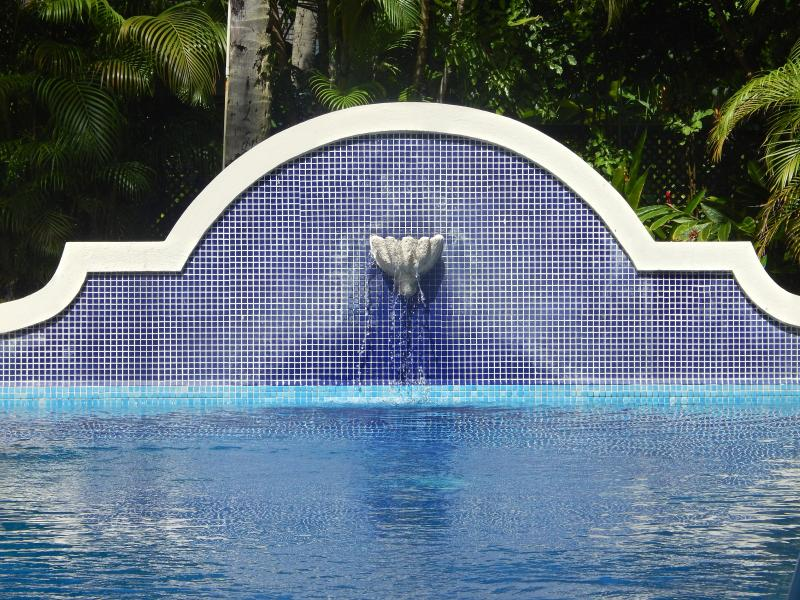 Just one of the pools available to guests