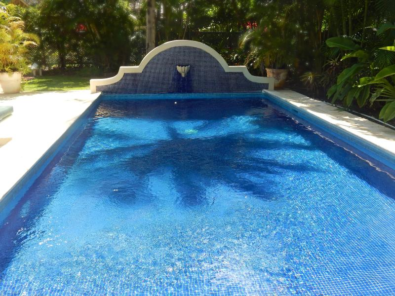 Gibbes Cottages - Shared Pool