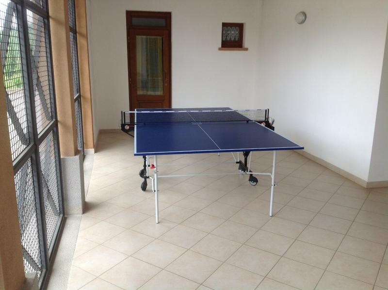 Play Table Tennis !