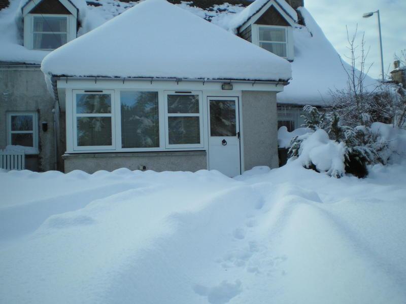 Snow fall at rear of Grant House..