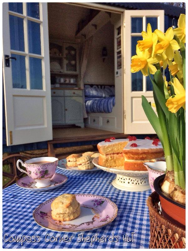 A variety of cakes to enjoy in the Sussex Countryside