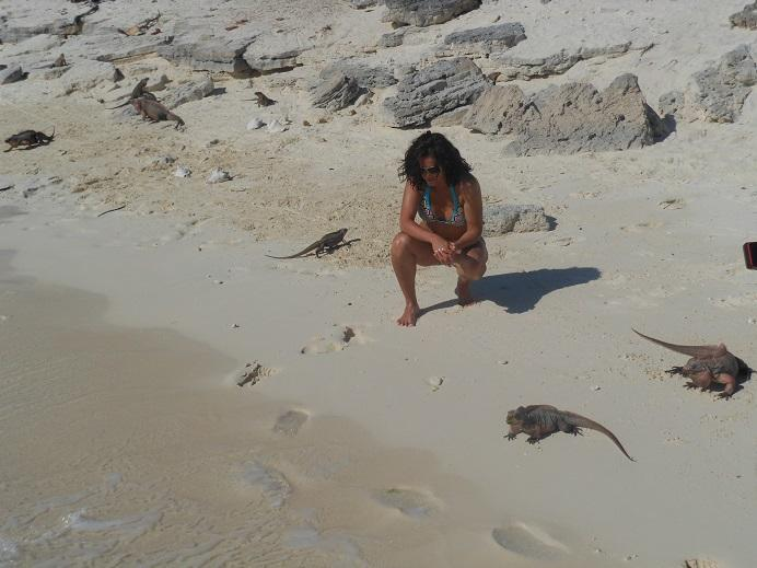 Let us arrange a trip for you to meet the iguana.