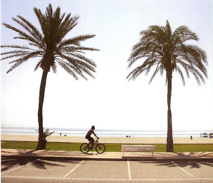 Paseo maritimo bordeando toda la playa de Roquetas .