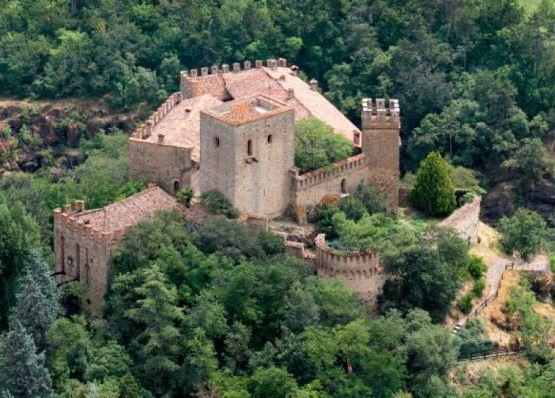 Torre del Barbagianni - Castello di Gropparello, vacation rental in Gropparello