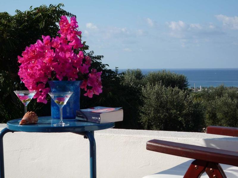 Le Palme: panoramic roof terrace.