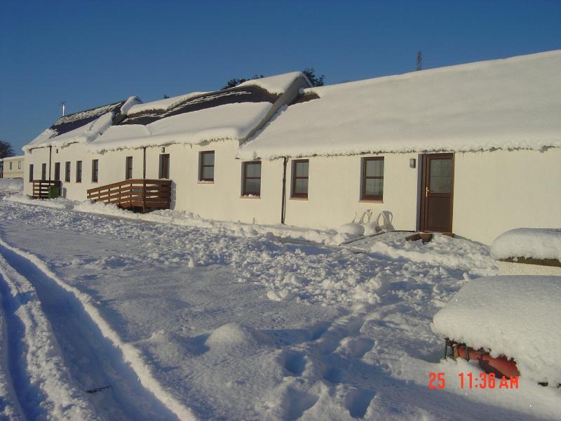 Christmas at Ruilick 2010
