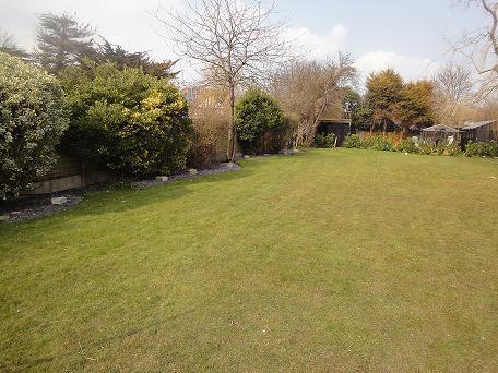 Rear garden, shared with owners