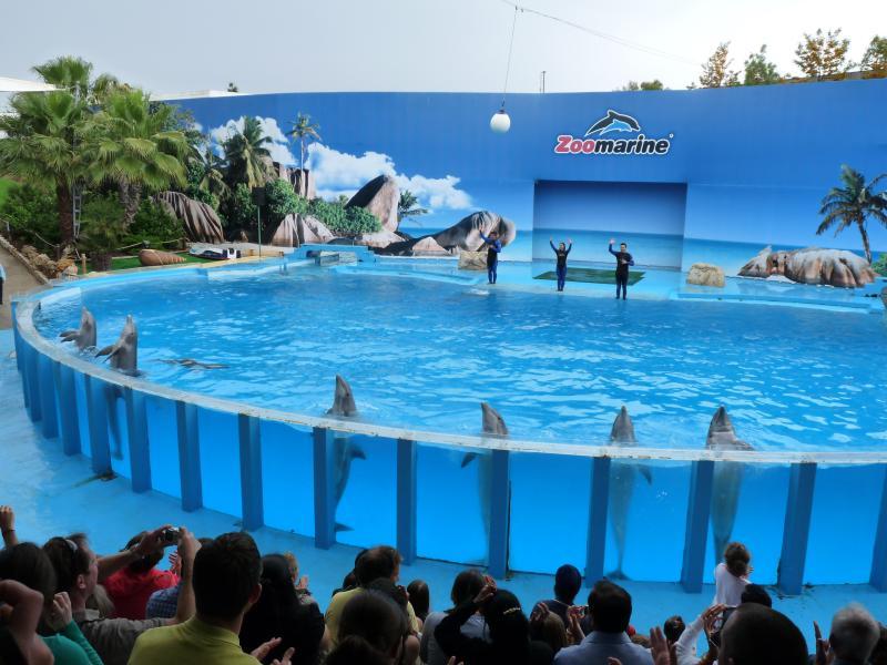 Los niños les encantará un viaje al Zoo Marine para un día de paseos, espectáculos y un parque acuático todo en uno.