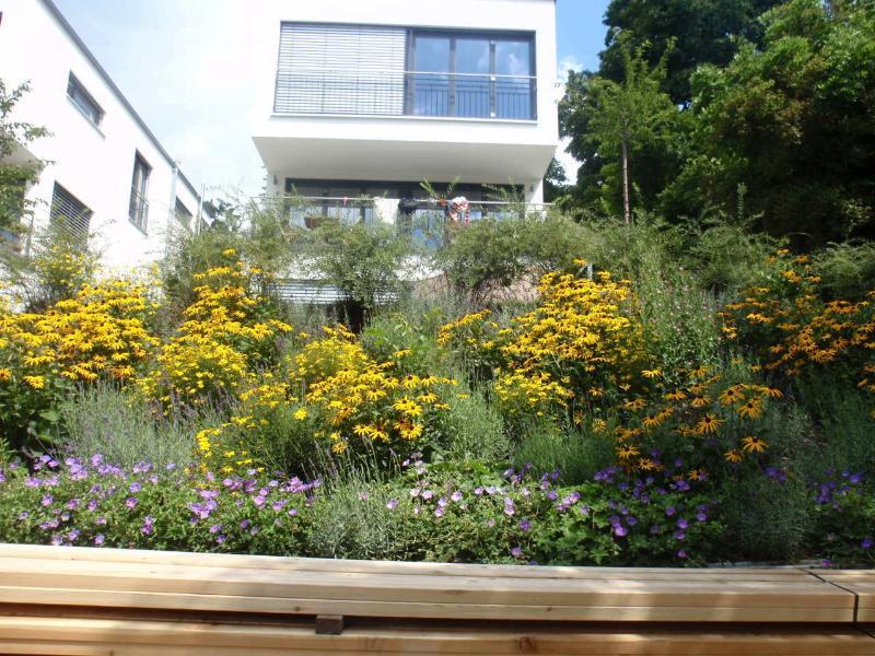 Notre maison avec des fleurs d'été