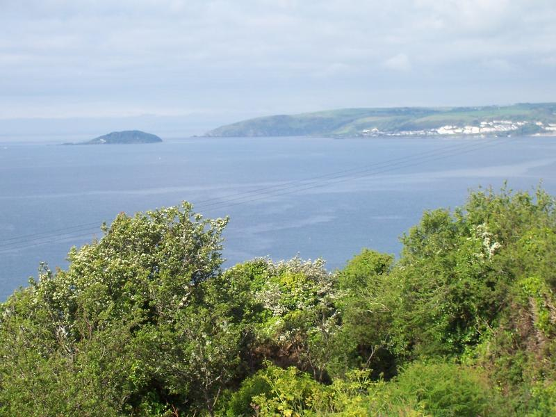View from the lane towards Looe Island