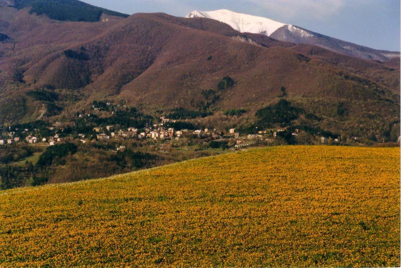 The villages Lizzano in Belvedere and Vidiciatico seen at distance