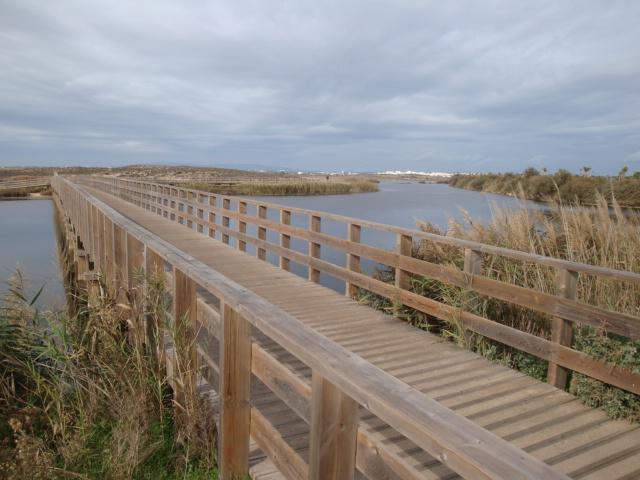 Parte de Ecovía por reservados Santuario parque y pájaro