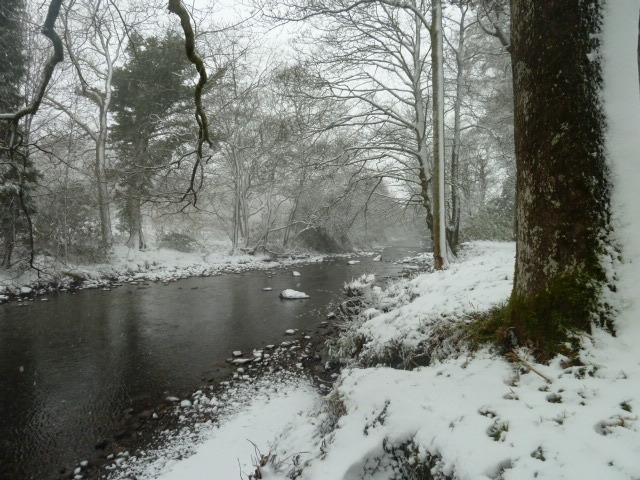 Looking along the river from the bottom of the garden on a snowy morning.