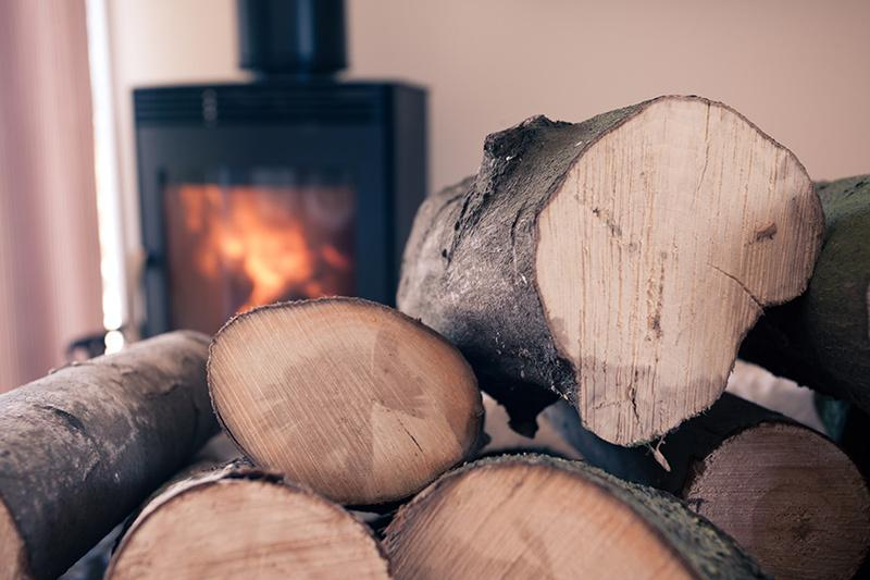 Snuggle up in front of the fire!