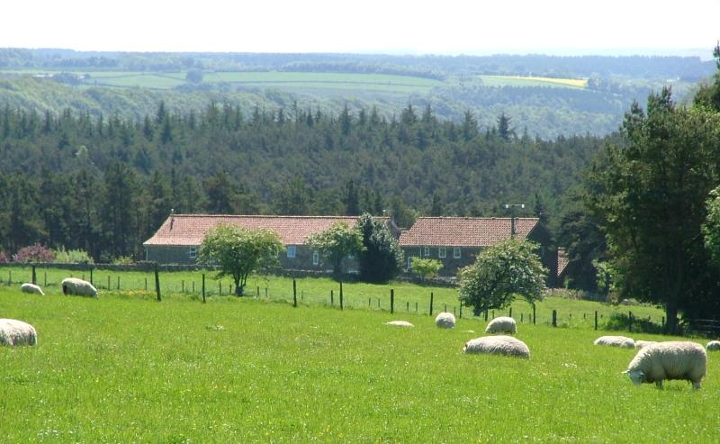 Stunning rural views over glorious countryside in the North York Moors National Park