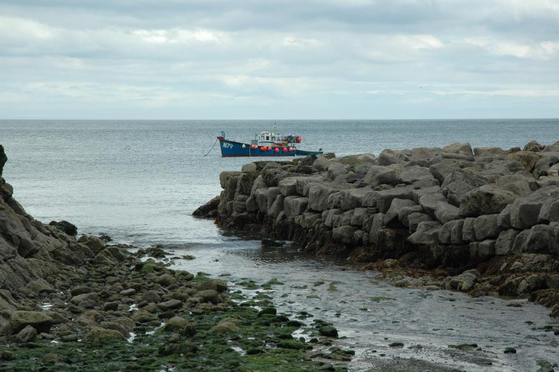 Enjoy tea and cake at Stackpole Quay