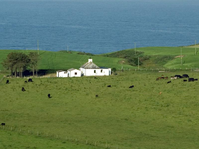 View from the hill behind Kenmuir Cottage, with the sea in the background