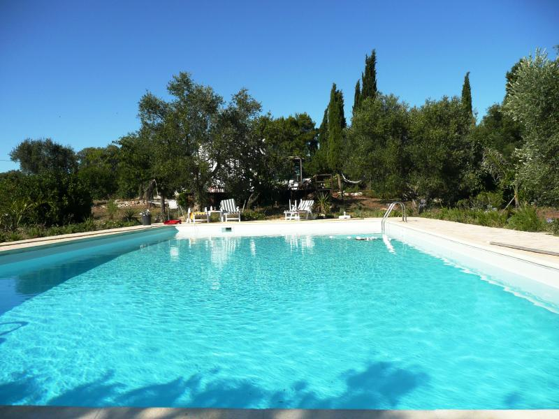 Private salt water pool 14m x 7.5m : a pool for real swimming