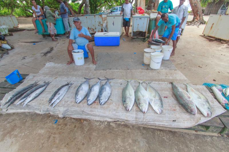 Local fishermen and their catch