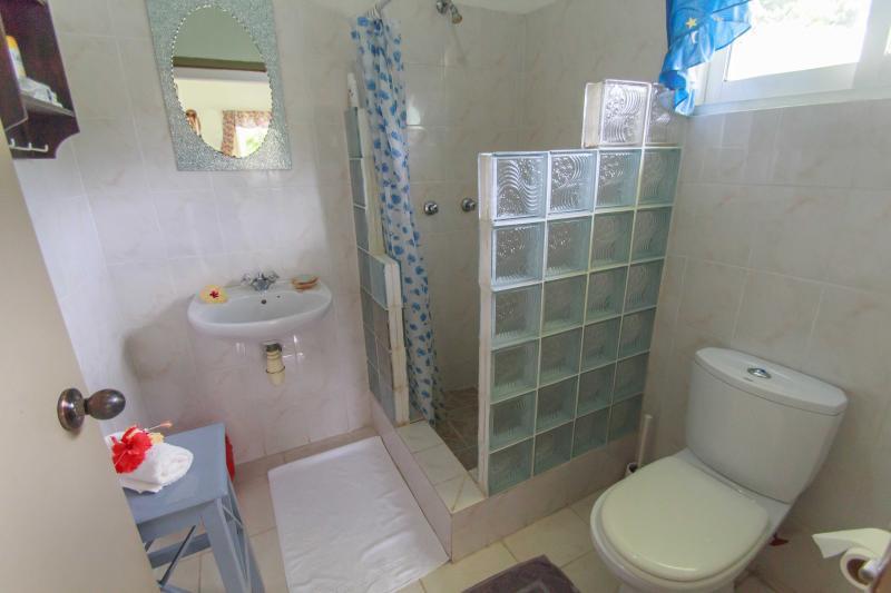 Coco Blanche Ocean View Villa bathroom and shower
